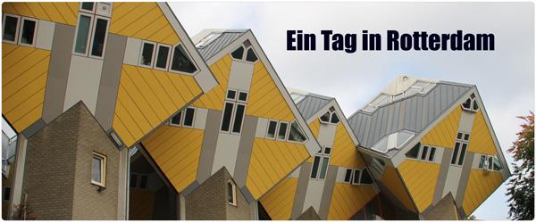 Qubes Rotterdam Artikelbild